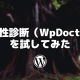 脆弱性診断(WpDoctor)を試してみた