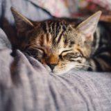 眠りが浅い問題を解決したい
